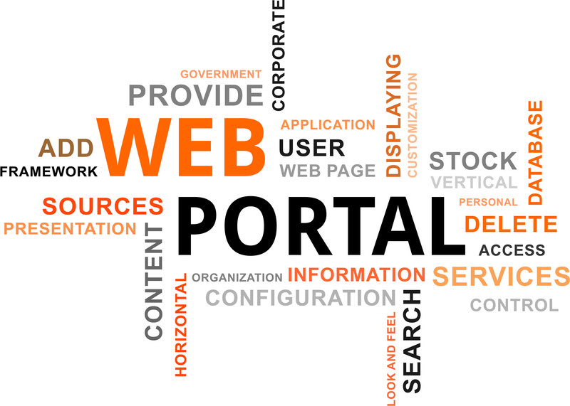 Web Portals: The Buyer-User Disconnect