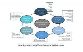 The SDoH and examples of each determinant